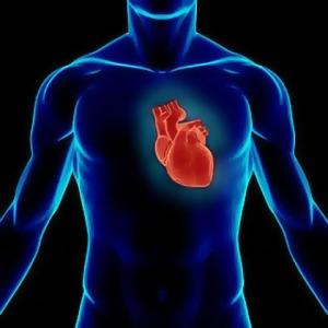 Semana - 1250 - 3 Corazón