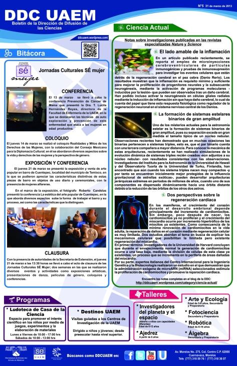Boletín DDC 5 - RS