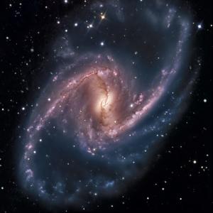 Semana - 1310 - 2 NGC1365