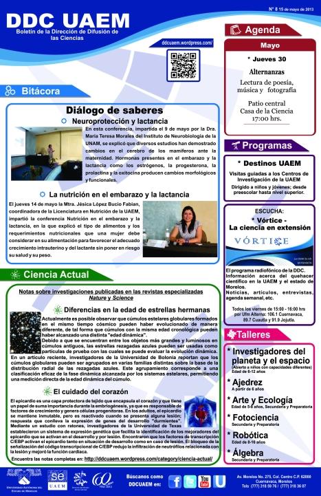 Boletín DDC 8 - RS