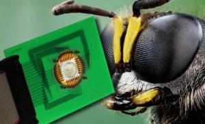 Semana - 1319 - 1 Bug's eye camera