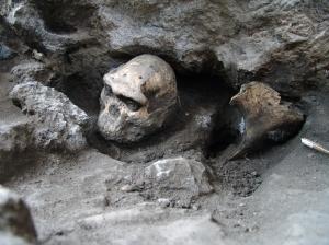 Semana -1343 - 1.3 Skull in situ