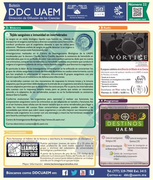 Boletín DDC 22 - RS