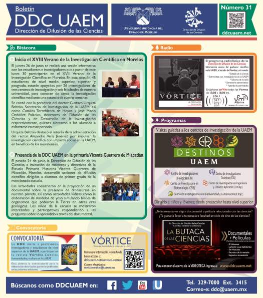Boletín DDC 31 - RS