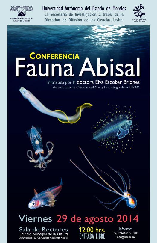 140829-Fauna Abisal RS
