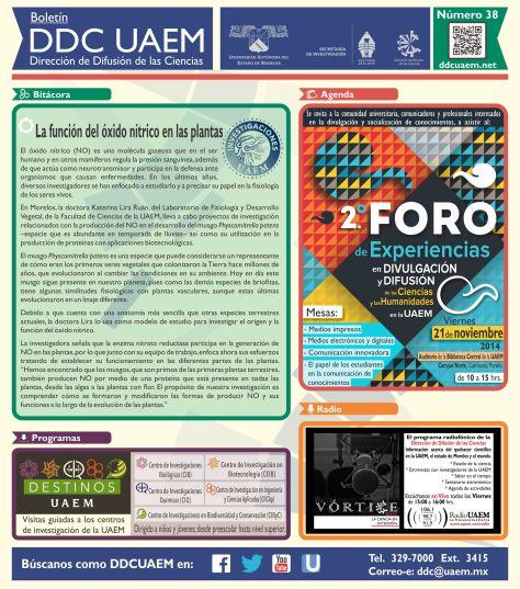 Boletín DDC 38 - RS