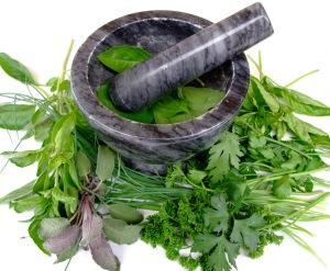 plantas_medicinal